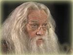 Albus Dumbledore - gespielt von Richard Harris? Oder Harry Robinson?